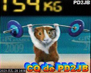 PD2F image#12